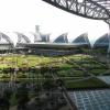 Bangkok Lufthavn